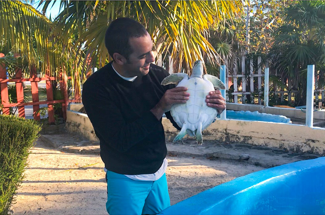 Criadero tortugas marinas. Excursión Cayo Largo del Sur