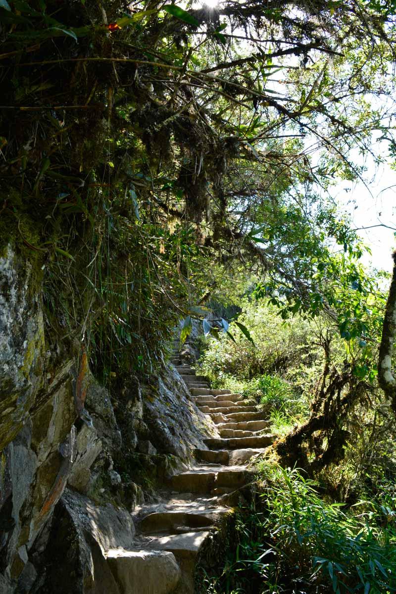 Cómo visitar Machu Picchu y Huayna Picchu escaleras subida Pueblo