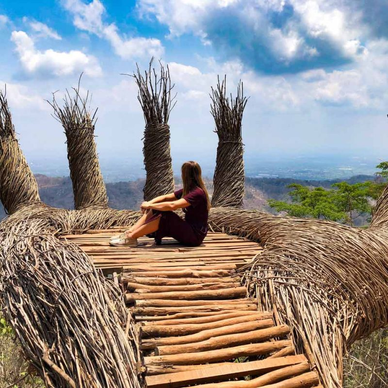 Cómo organizar tu viaje por libre a Indonesia. Preparativos Pinus Pengger Parque Java Come Vive Viaja