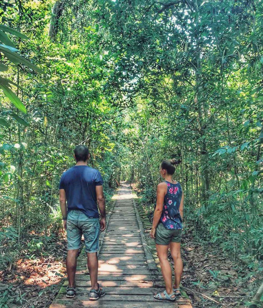 Cómo organizar tu viaje por libre a Indonesia. Preparativos Selva Borneo