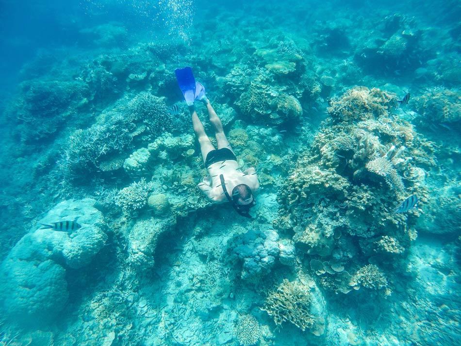 Itinerario y ruta en Indonesia por libre. Snorkel en Karimunjawa Java