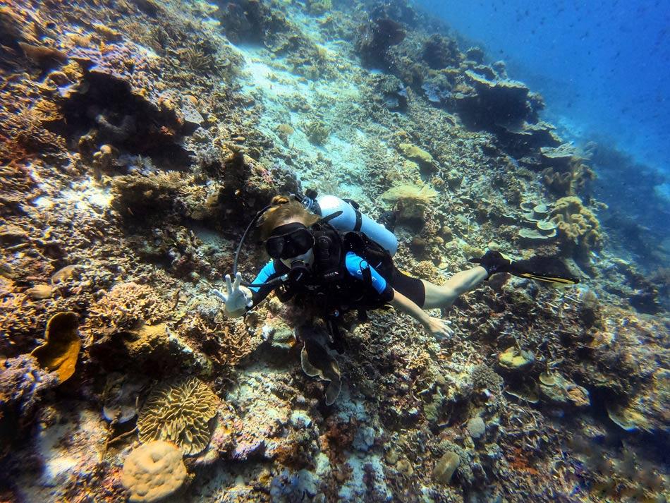 Buceo Rja Ampat paraíso fondo marino